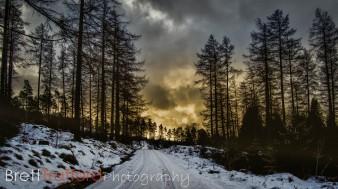 Brett Trafford Photography-14