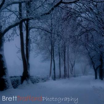 Brett Trafford Photography-6